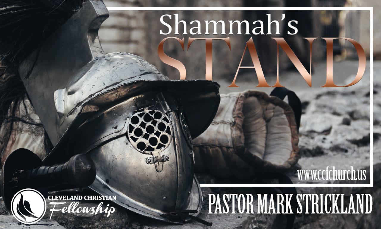 shammahs_stand