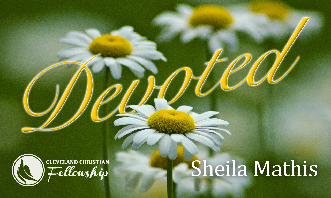 devoted_sheila